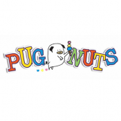 Pugnuts Ice Cream & Gelato Shop