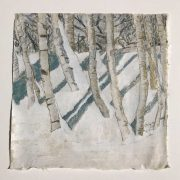 Birch Trees by Stephan Haley