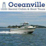 An Oceanville Cabin & Harbor Tours