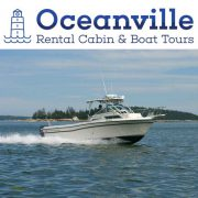 An Oceanville Cabin & Harbor Tours
