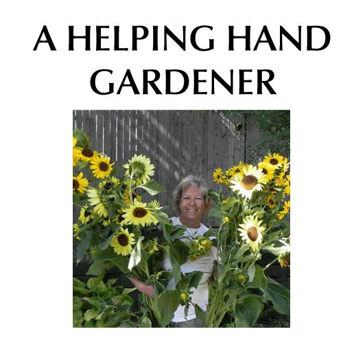 A Helping Hand Gardener