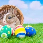 Down-Easter Egg Hunt 2019